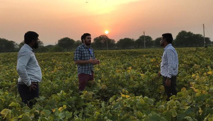 India será la nueva potencia agrícola mundial y logrará su meta