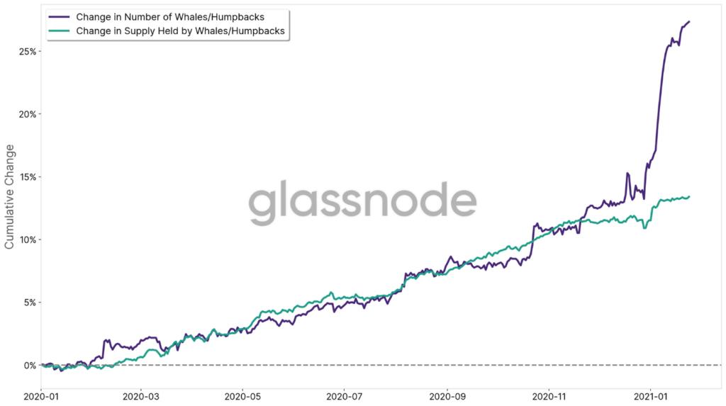 Figura 5 - El cambio acumulado (desde 2020) en el número de ballenas / jorobadas. Fuente: Glassnode