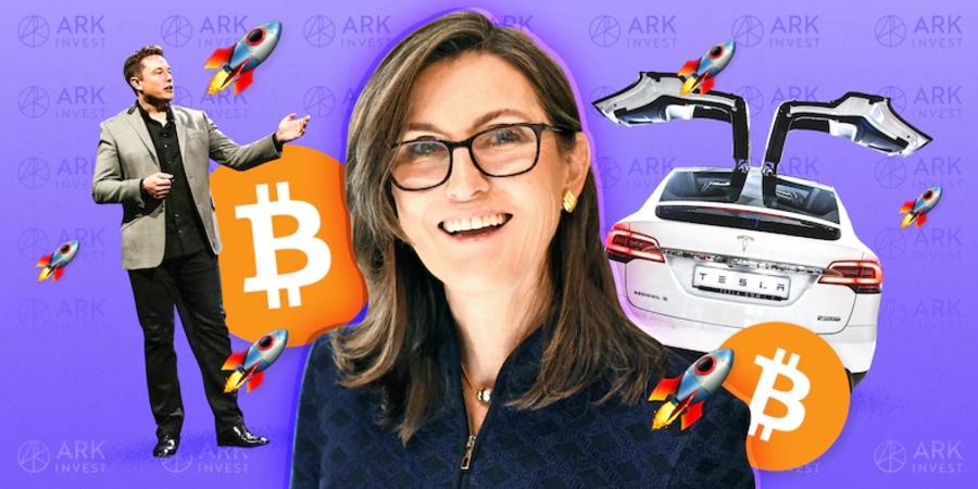 Cathie Wood proyecta un precio objetivo para Tesla de USD 3000