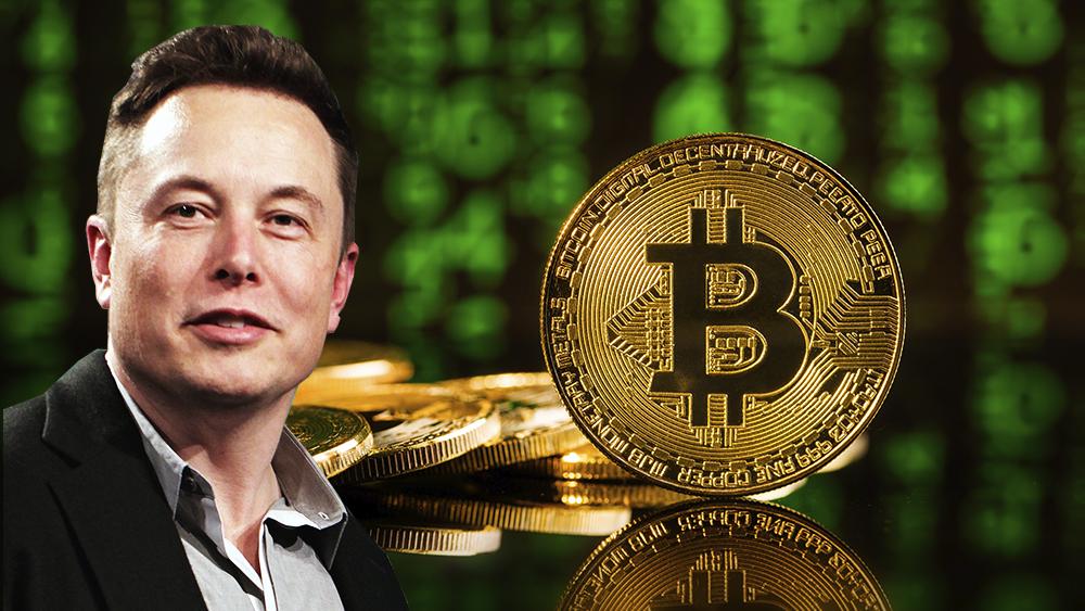 Cuántos bitcoins tiene Elon Musk
